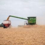En 2020, la venta de sembradoras subió más del 20%